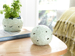 Picture of Hortensia Porcelain With Led Decorative Object Green